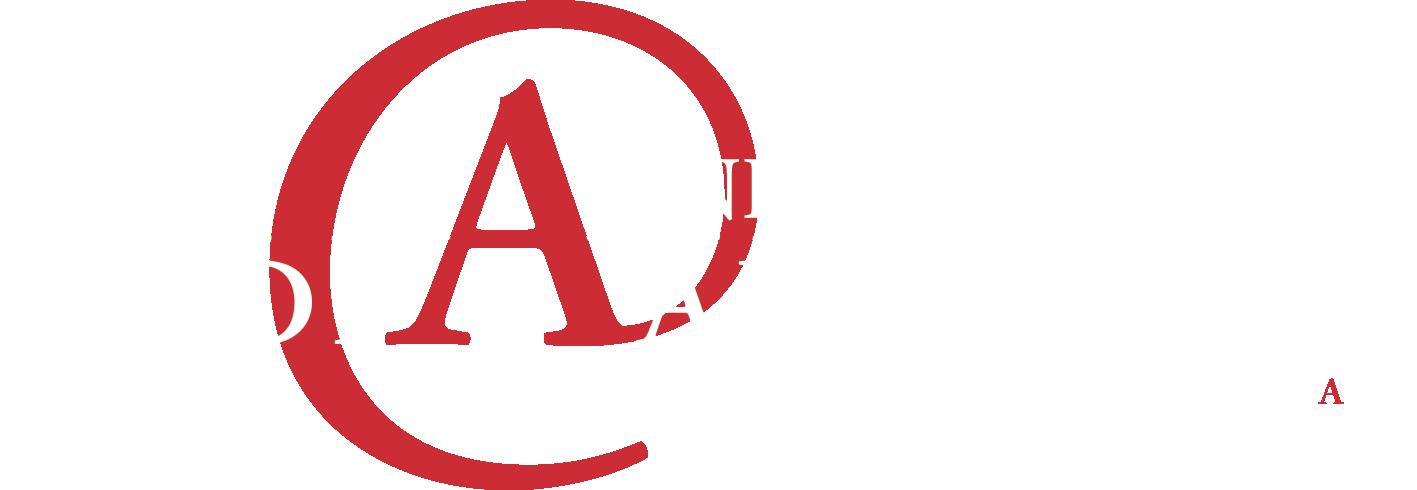 Van Nieuwenhoven MediaAdvies